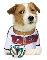 Sparky Germany.jpg