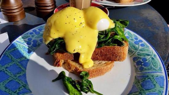 poached-eggs-with-spinach.jpg